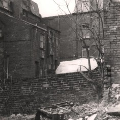 Wasteground at back of Havelock St, May 1979   Photo: Tony Allwright