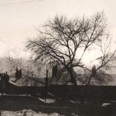 Sunshine, tree and snowy roofs in Broomhall, January 1978 | Photo: Tony Allwright