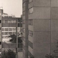 Broomhall Flats with Viners in the background, August 1977 | Photo: Tony Allwright
