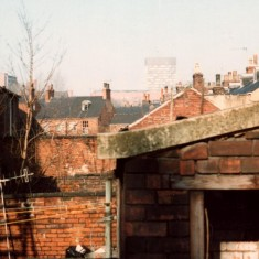 Outside toilet in Broomhall back yard, February 1980   Photo: Tony Allwright