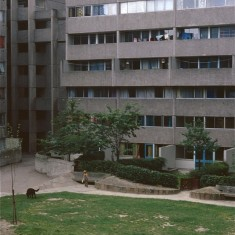 Broomhall Flats. July 1978 | Photo: Tony Allwright