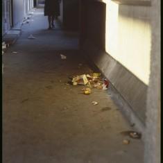 Litter, Broomhall Flats. January 1979 | Photo: Tony Allwright