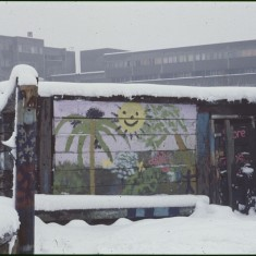 Snow, sun and palm tree. Broomhall Flats, February 1979 | Photo: Tony Allwright