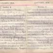 Doris Hogan Diary: 2nd and 3rd January 1916