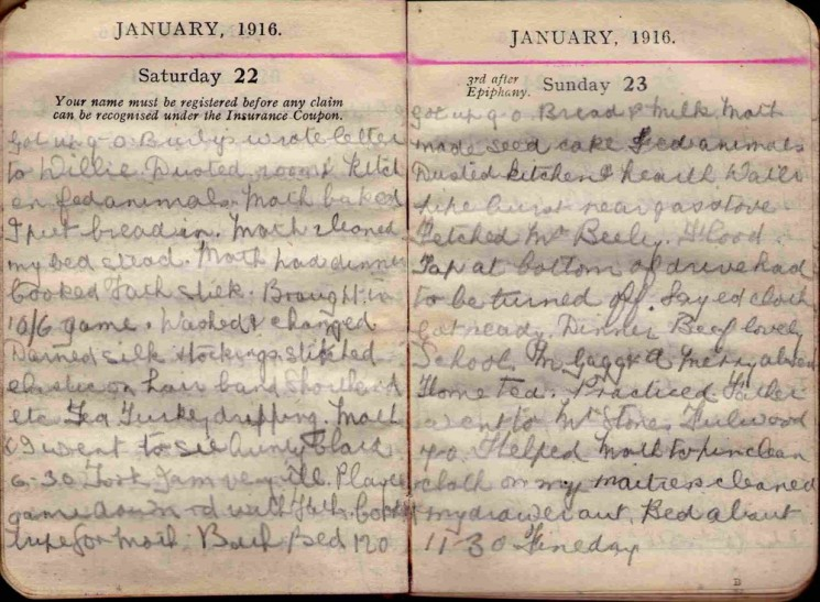 Doris Hogan 1916 Diary: January 22nd and 23rd | Photo: Suzanne Cam