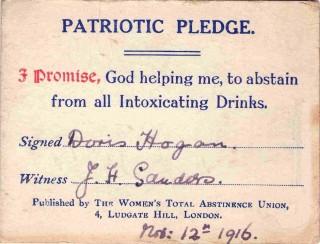 Patriotic Pledge, 1916 | Photo: Suzanne Cam