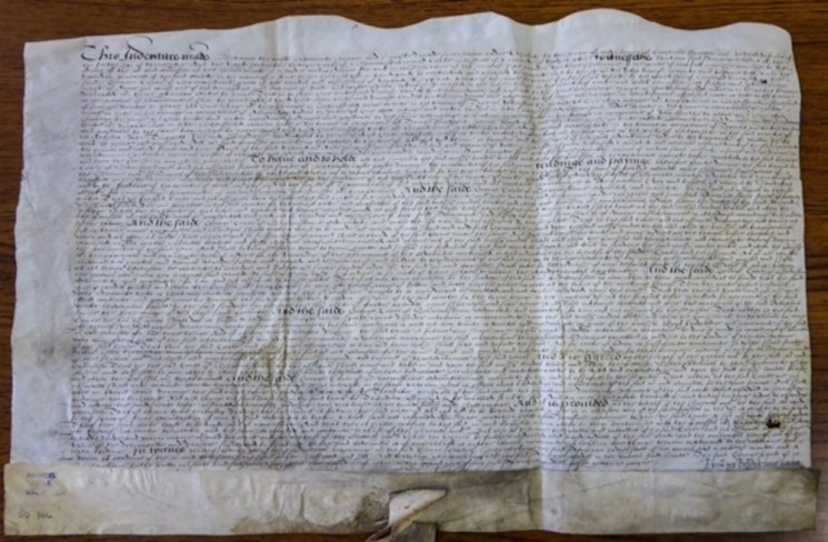Grant of Broomhall land from Queen Elizabeth I. 1581 | Photo: SALS ACM/SD/146 & Sheffield Archives