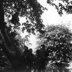 Children playing on a tree swing. 1980s | Photo: Our Broomhall
