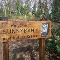Sunnybank Reserve 2013   Photo: Our Broomhall