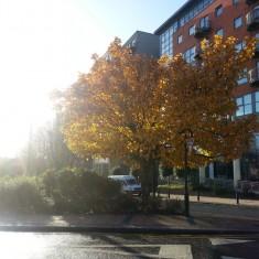 Broomhall in Autumn
