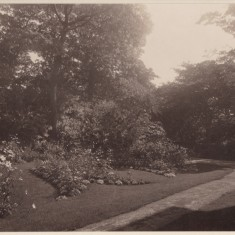 Flower beds in the garden at Park House. c.1930 | Photo: William Emery