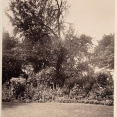 Garden at Park House. c. 1930 | Photo: William Emery