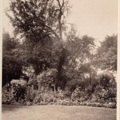 Garden at Park House. c. 1930 | Photo: William Emery